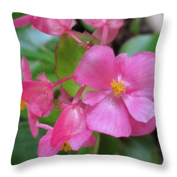 Pink Begonias Throw Pillow