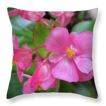Pink Begonias Throw Pillow