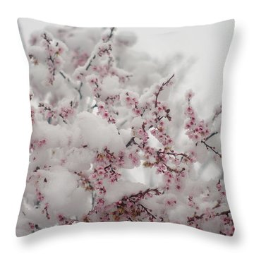 Pink Spring Blossoms In The Snow Throw Pillow by Suzanne Powers