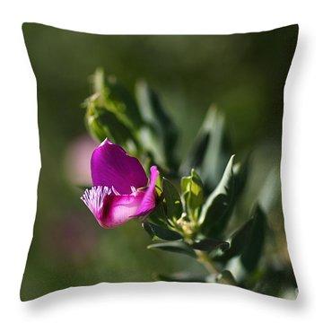 Pink Blush - Sweet Pea Bush  Throw Pillow by Joy Watson