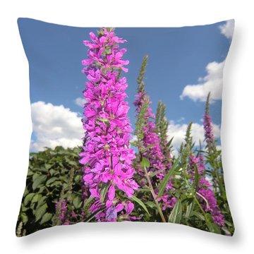Pink Brilliance Throw Pillow