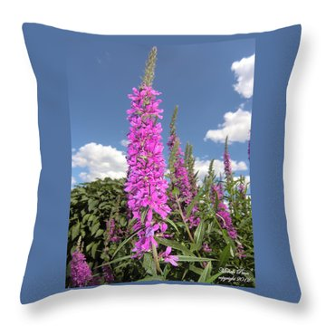 Pink Brilliance Throw Pillow