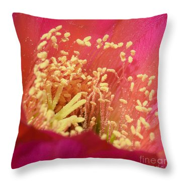 Pink Cactus Fireworks Throw Pillow