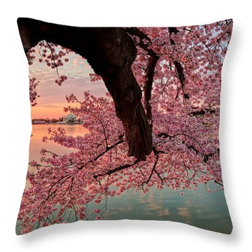 Pink Cherry Blossom Sunrise Throw Pillow