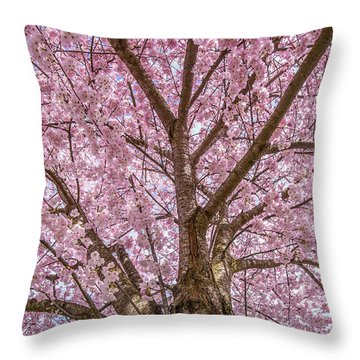 Pink Cherry Blossom Tree Throw Pillow