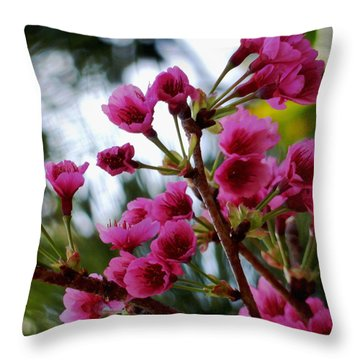 Pink Cherry Blossoms Throw Pillow by Pamela Walton