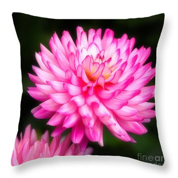 Pink Chrysanths Throw Pillow
