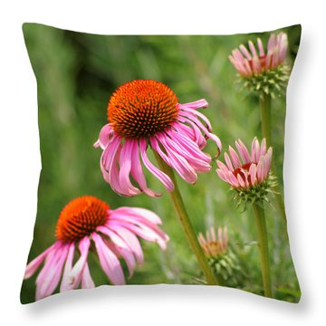 Pink Cone Flower Throw Pillow by Art Block Collections