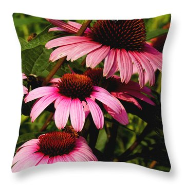 Throw Pillow featuring the photograph Pink Coneflowers by James C Thomas