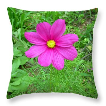 Pink Cosmos Throw Pillow by Aimee L Maher Photography and Art Visit ALMGallerydotcom