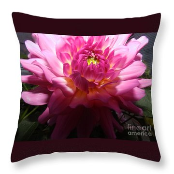 Pink Dahlia Opening Collection No. P49 Throw Pillow