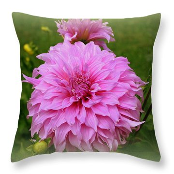 Pink Dahlia Throw Pillow by Donna Walsh