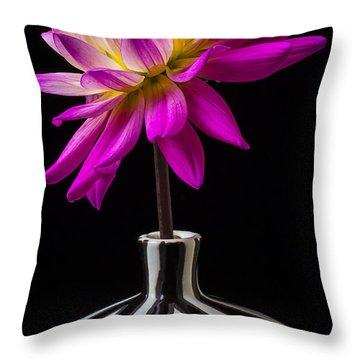 Pink Dahlia In Striped Vase Throw Pillow