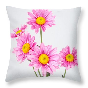 Pink Dasies Throw Pillow