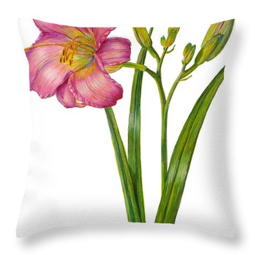 Pink Daylily - Hemerocallis Throw Pillow