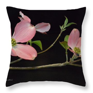 Throw Pillow featuring the photograph Pink Dogwood Branch  by Jeannie Rhode