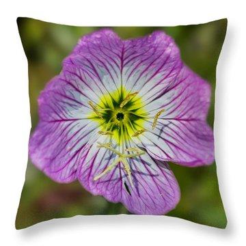 Pink Evening Primrose Throw Pillow