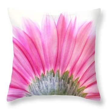 Pink Fan Throw Pillow by Andrea Kollo