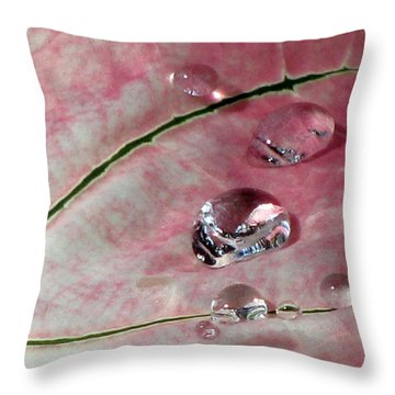 Pink Fancy Leaf Caladium - September Tears Throw Pillow by Pamela Critchlow