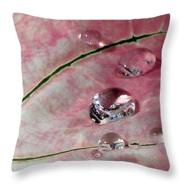Pink Fancy Leaf Caladium - September Tears Throw Pillow