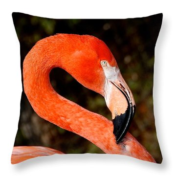 Not So Pink Flamingo Throw Pillow