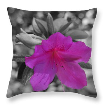 Throw Pillow featuring the photograph Pink Flower 2 by Maggy Marsh
