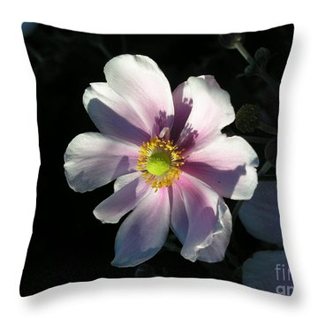 Pink Flower Throw Pillow by Bev Conover