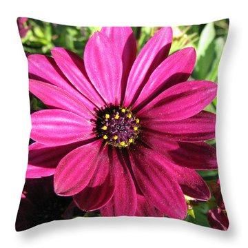 Pink Flower Throw Pillow by Eva Csilla Horvath