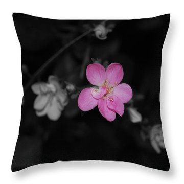 Throw Pillow featuring the photograph Pink Flower  by Maggy Marsh