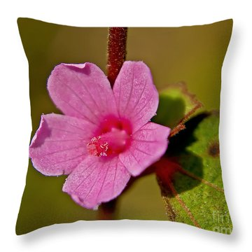 Throw Pillow featuring the photograph Pink Flower by Olga Hamilton