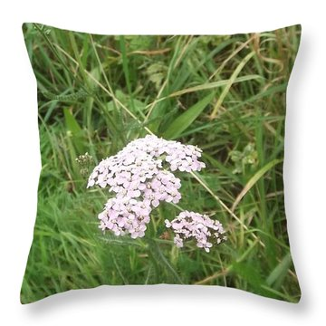 Pink Flowers Throw Pillow by John Williams
