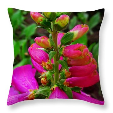 Pink Foxglove Throw Pillow by Margaret Newcomb