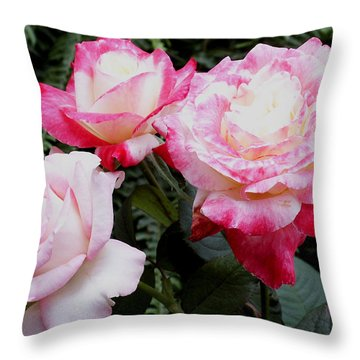 Throw Pillow featuring the photograph Pink Garden Roses by James C Thomas