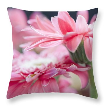 Pink Gerber Daisy - Awakening Throw Pillow