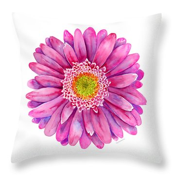 Pink Gerbera Daisy Throw Pillow by Amy Kirkpatrick