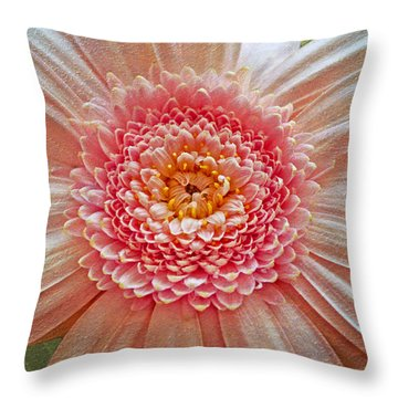 Pink Gerbera Textured Throw Pillow