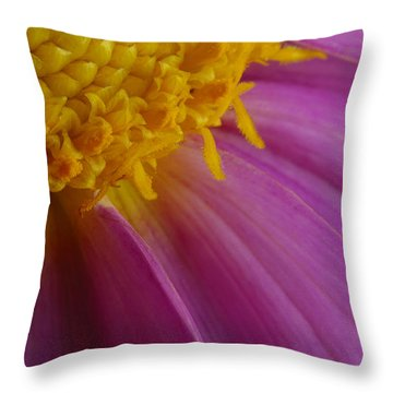 Pink Gown Throw Pillow
