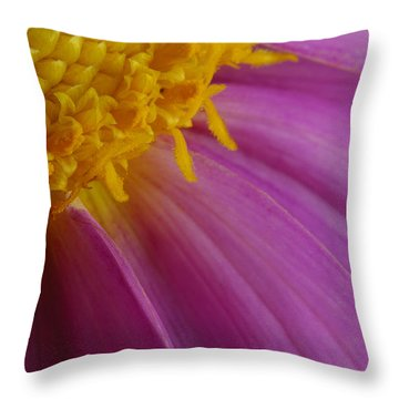 Pink Gown Throw Pillow by Arthur Fix