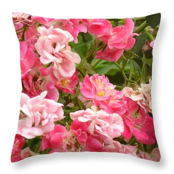 Throw Pillow featuring the photograph Pink Groundcover Roses by Margaret Newcomb