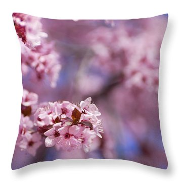 Pink Throw Pillow by Guido Montanes Castillo