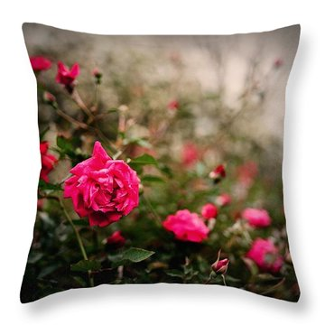 Pink Heaven Throw Pillow by Linda Unger