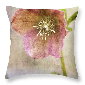 Pink Hellebore Throw Pillow by Betty Denise