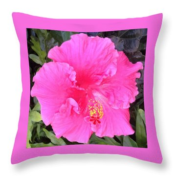 Throw Pillow featuring the photograph Pink Hibiscus by Alohi Fujimoto