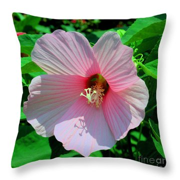 Pink Hibiscus Throw Pillow by Luther Fine Art