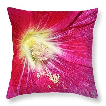 Pink Hollyhock Throw Pillow by Phyllis Denton