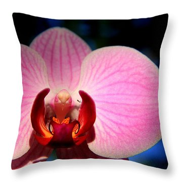 Throw Pillow featuring the photograph Pink House by Greg Allore