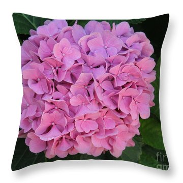 Pink Hydrangea All Profits Benefit Hospice Of The Calumet Area Throw Pillow