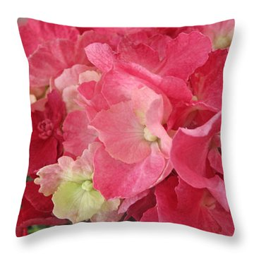 Pink Hydrangea Throw Pillow by Barbara McDevitt