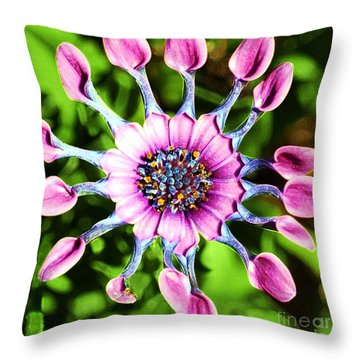 Pink Indian Painted Daisy Throw Pillow by Kathleen Struckle