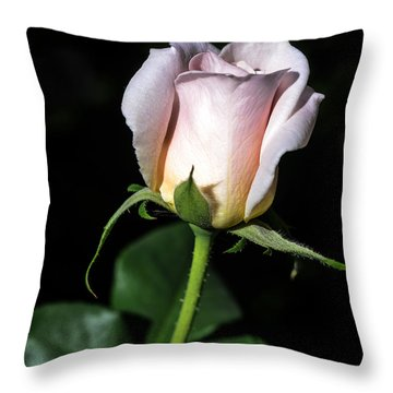 Pink Intentions Throw Pillow by Camille Lopez